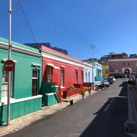 Private Sightseeing Trip to the Cape of Good Hope and Boulders Penguin Colony Resmi