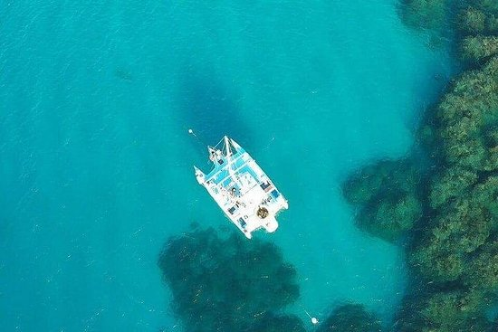Catamaran, snorkeling & Dunn's River...