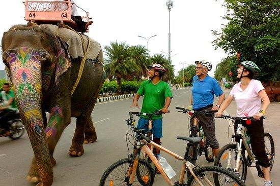 Tour du matin en vélo de Jaipur