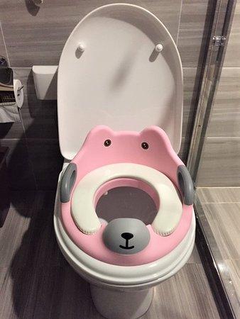 Potty seat insert for kids