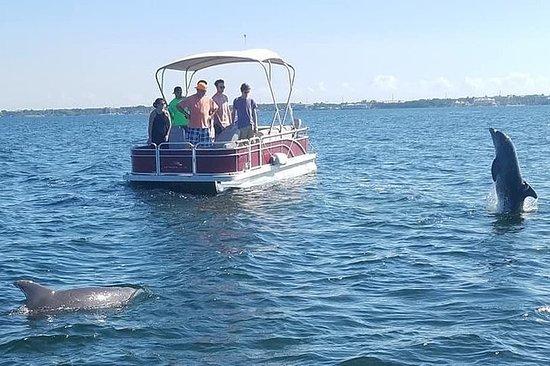 Florida Keys Eco Tour by Boat Fotografie
