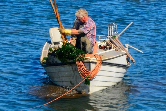 Naturskjønne turer på Prince Edward Island