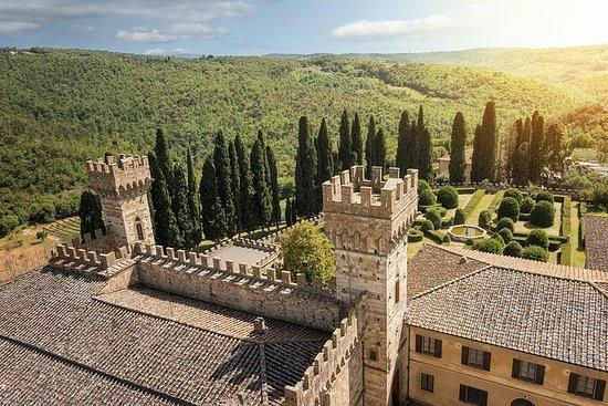 Heldagstur fra Firenze: Chianti og...