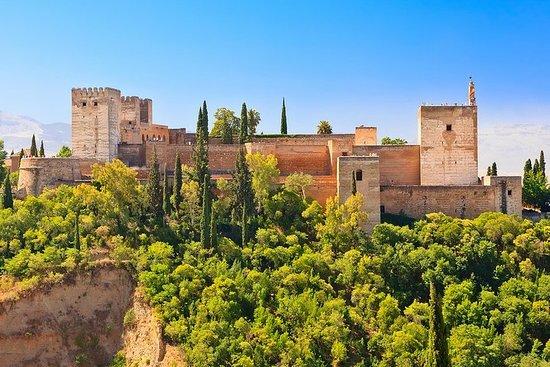 Tour a piedi di Granada con giardini