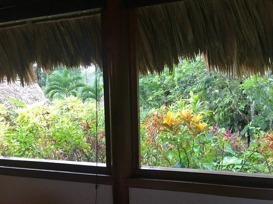 VIew from our cabana