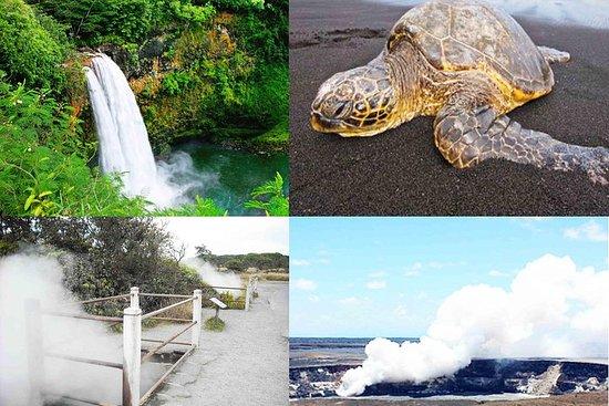Hilo Shore Excursion: Volcanoes...