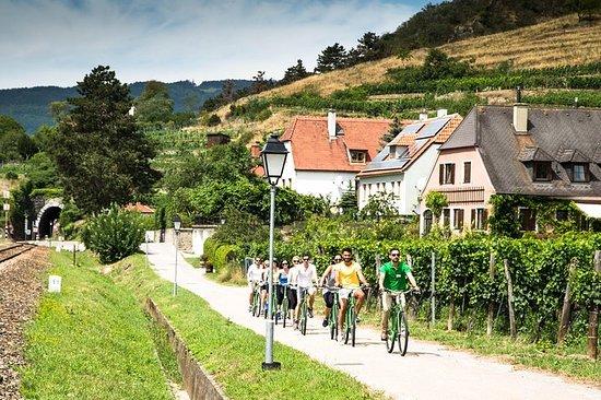 ウィーン・ヴァッハウ渓谷でのワイン・テイスティング・バイク・ツアー