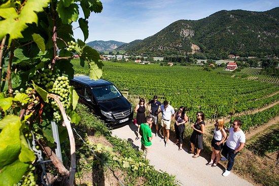 ウィーン発ヴァッハウ渓谷とワインテイスティング少人数ツアー