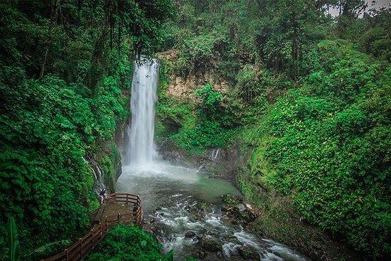 Tagesausflug nach Costa Rica von San...