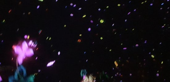 teamLab Planets Tokyo - Floating in the falling universe of flowers