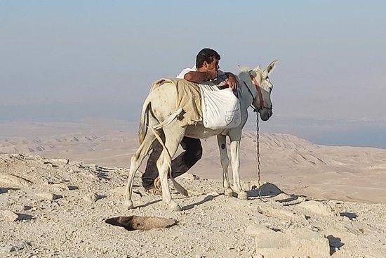 Judean desert 4x4 day trip