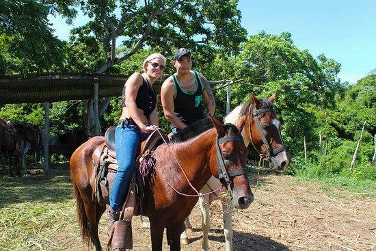 Shore Excursion: Horseback Riding...