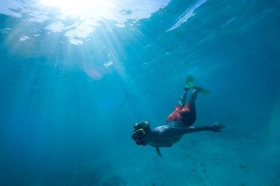 Cades Reef Sail & Snorkel Antigua ...