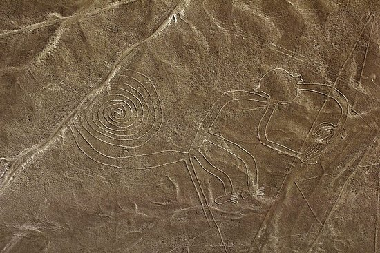 Full Day Tour Nazca Lines & Ballestas...