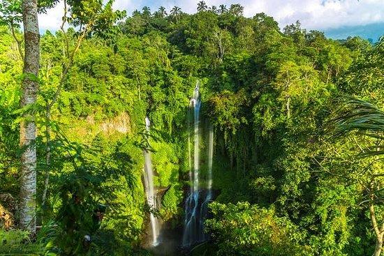 Cachoeira Sekumpul de pequeno grupo...