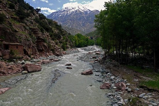 Day trip to the High Atlas and Ourika Valley: Private صورة فوتوغرافية