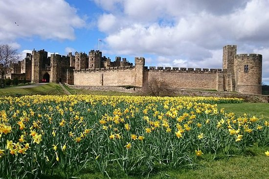 Borders og Alnwick Castle Tour fra Edinburgh