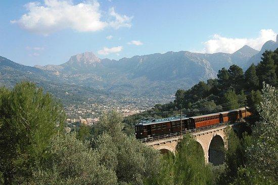 Excursión de un día en Mallorca con...
