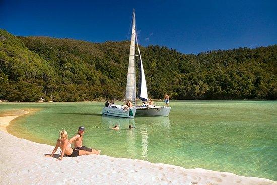 Full-Day Sailing Adventure in the Abel Tasman National Park