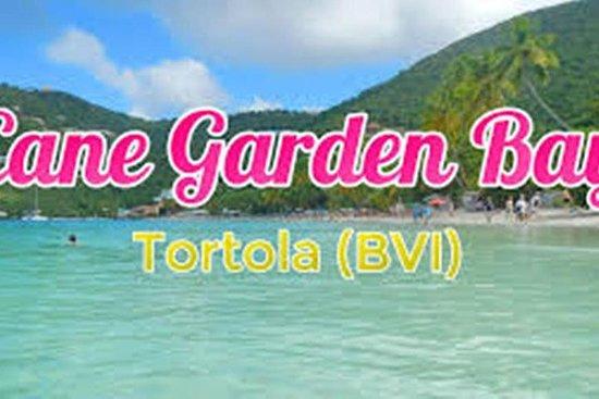 Lunchpakket Tortola Beach