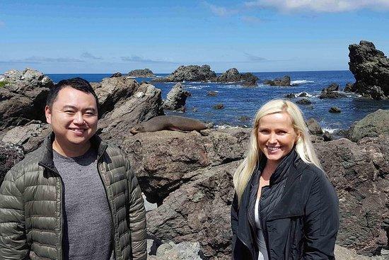 Martinborough Wine and Wild Coast Tour from Wellington