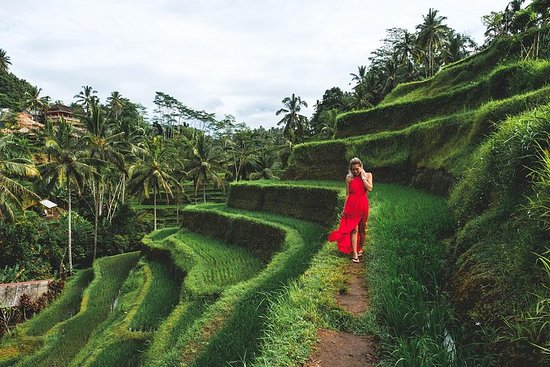 Visite Privée de Bali: Visite d'Ubud et...