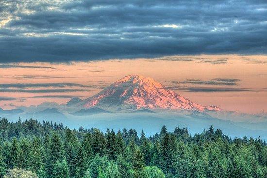 Wandeling Mt. Rainier & Taste Yakima ...