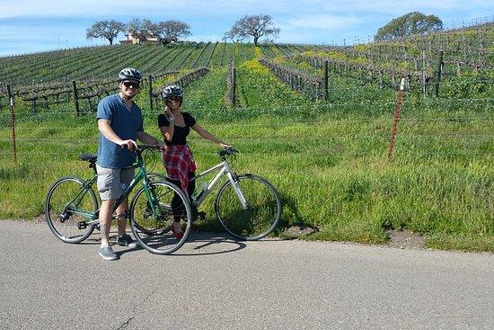 Santa Ynez Valley騎自行車和品酒之旅