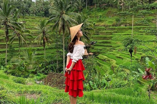 Best of Ubud: Nature, Temple, Rice...