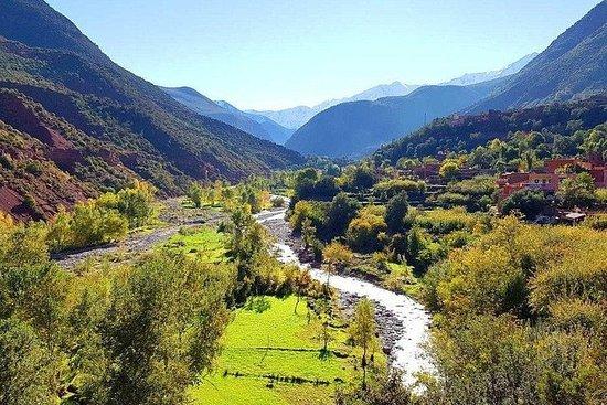 Deltagstur til Ourika Valley fra...