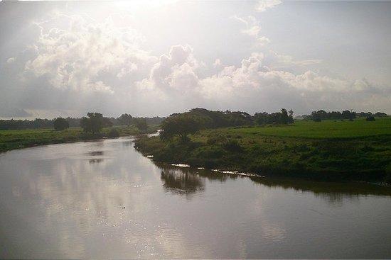 Excursion d'une journée à Twante