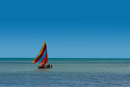 Cumbuco Beach with City Tour from Fortaleza