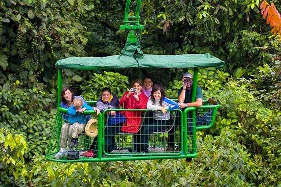 Tramway aérien de la forêt tropicale...