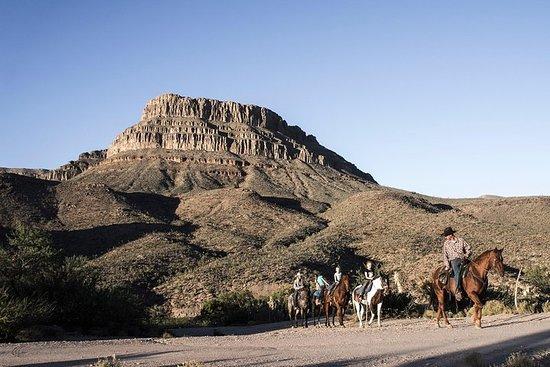 全天大峡谷之旅与骑马从拉斯维加斯