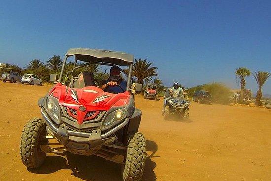 Half Day UTV 4x4 & Buggy Safari at Lara Bay-Akamas