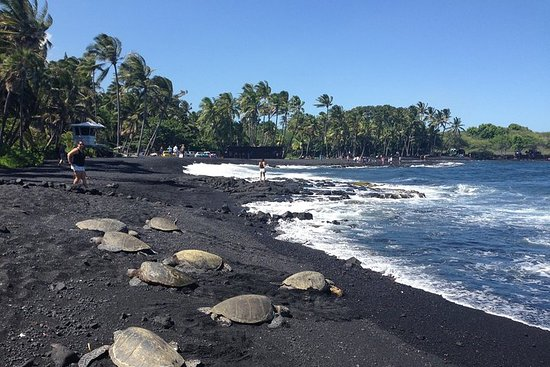 Hawaii Big Island Circle Tour di piccoli gruppi: Cascate - Hilo