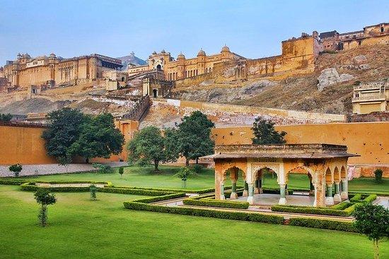 Excursion d'une journée à Jaipur au...