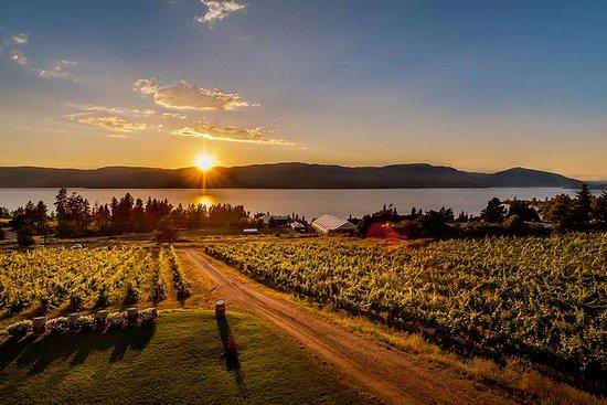 半日葡萄酒之旅:日落色彩和獨特風味