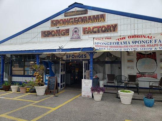 Spongeorama Sponge Factory
