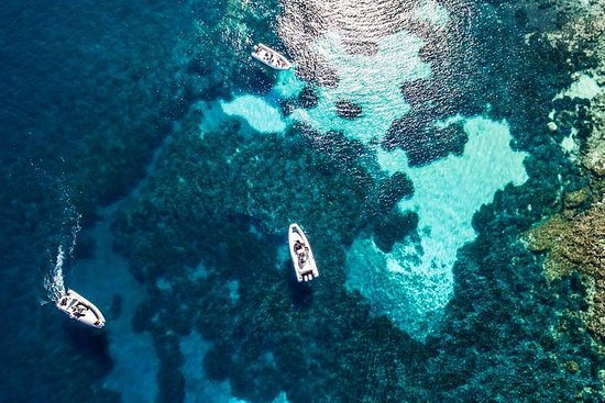 Excursión en barco de un día a...