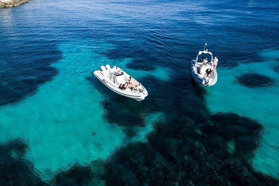 Boat Tour Egadi Day to discover...