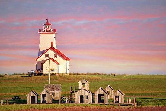 Shore Excursion: Coastal Lighthouse og Winery Tour fra Charlottetown