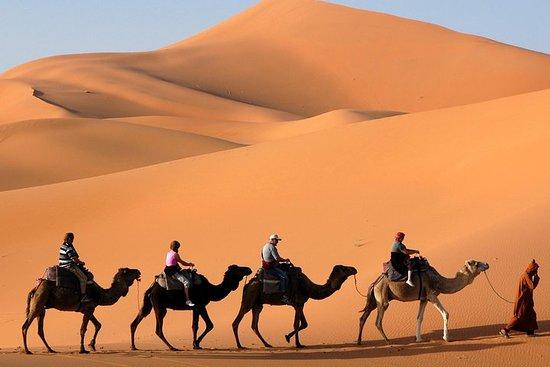 Liten gruppe guidet tur i Tanger...