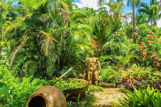 Barbados Botanical Tour