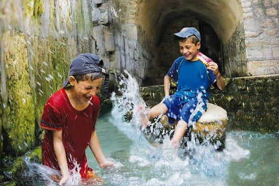 Excursion guidée de Jérusalem: la...