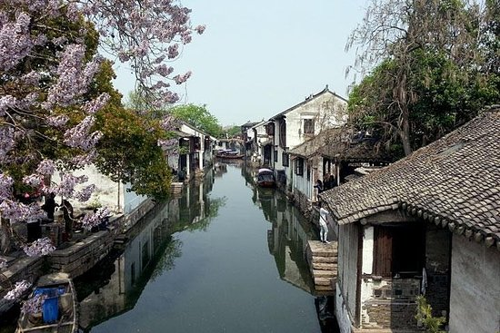 1-Day Private Shanghai to Wuzhen Tour...