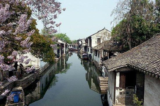 1-dages privat Shanghai til Wuzhen-tur...