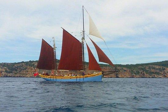 Andrea Jensen帆船日遊船包括傳統船舶,午餐和葡萄酒