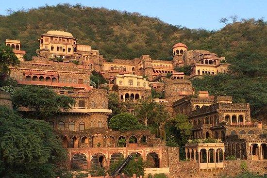 Excursion privée au Neemrana Fort et au Bal Qila, déjeuner compris Photo