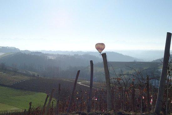 Hot Air Balloon Flight over Piemonte...